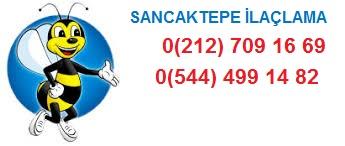 Sancaktepe haşere ilaçlama servisi, ailenizin ve sizin huzuru için tüm haşere ve kemirgenlere kurumsal çözümler üretmektedir.0544 499 14 82.