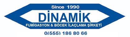 Dinamik Türkiye