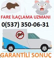 İstanbul İl ve İlçe belediyeleri böcek ilaçlama, pire ilaçlama, fare ilaçlama hizmetlerini yaşamsal alanlarda yapmıyorlar.