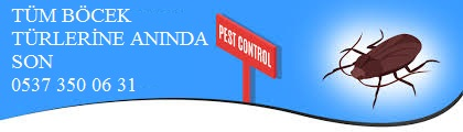Böcek ilaçlamada son ilaçlama sistemleri ile anında ekonomik çözüm sunuyoruz.0537 350 06 31.