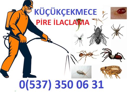 Alman hamam böceği ilaçlama